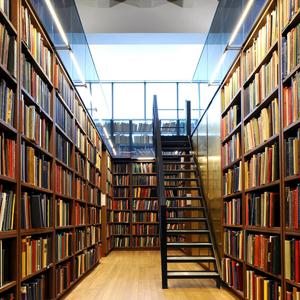 Библиотеки Мариинска